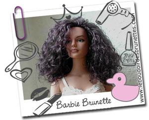 Le Boudoir des Brunettes : le Blog des Barbies brunes et frisées