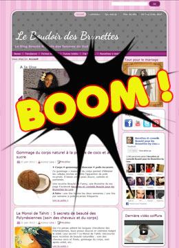 Crash temporaire du blog Le Boudoir des Brunettes...Tout est réparé !