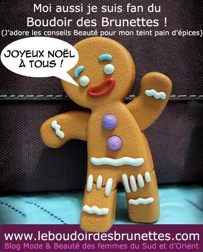 Joyeux Noël du Boudoir des Brunettes !