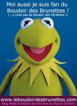 Comme Kermit, devenez Fan de la page Facebook du Boudoir des Brunettes !